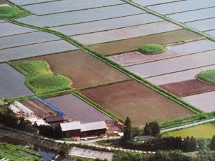 水田に点在する古墳